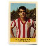 Estampas de Fútbol Coca-Cola Collectible cards